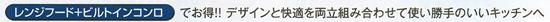 renji_biruto_title